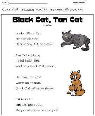 black cat tan cat