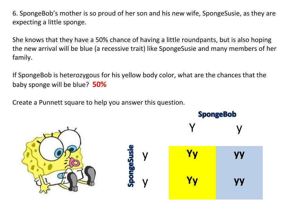 Genetics with SpongeBob – Learning how to use Punnett Squares – Middle School Science Blog
