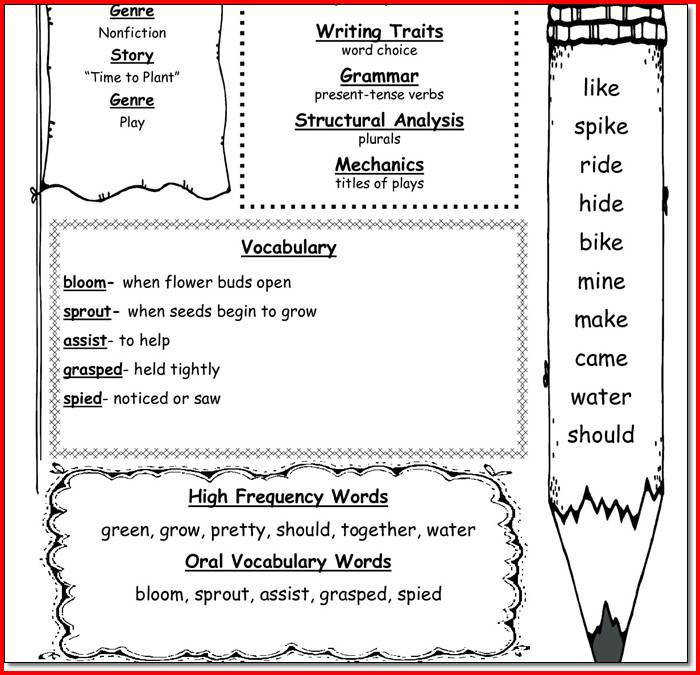 7 Grade Social Studies Worksheets : Th grade social studies worksheets homeschooldressage