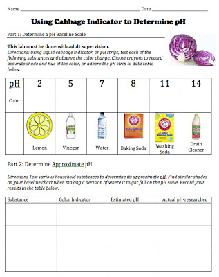 Free of student worksheet for a cabbage pH indicator lab from STEMmom