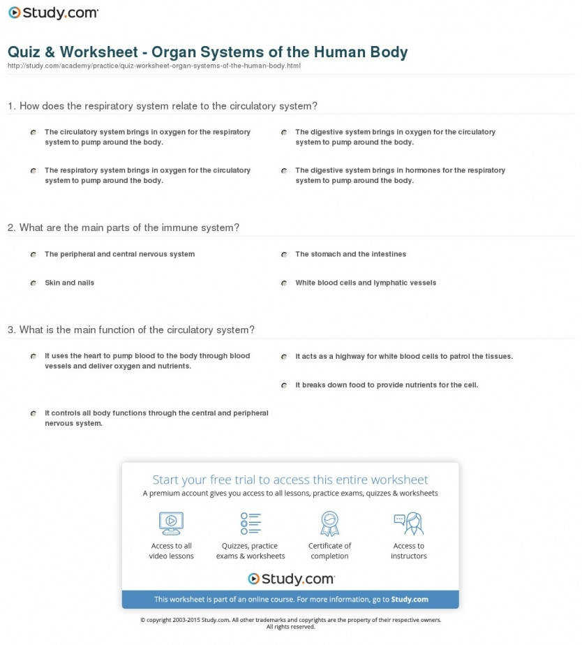 Anatomy and Physiology Worksheets | Homeschooldressage.com