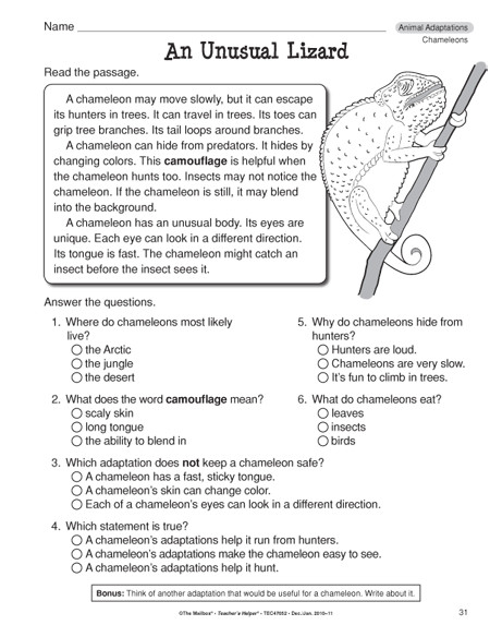 Animal Adaptations Worksheets 3rd Grade images