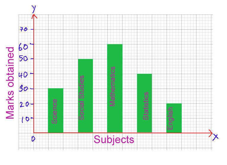 Study the bar graph and answer the following questions