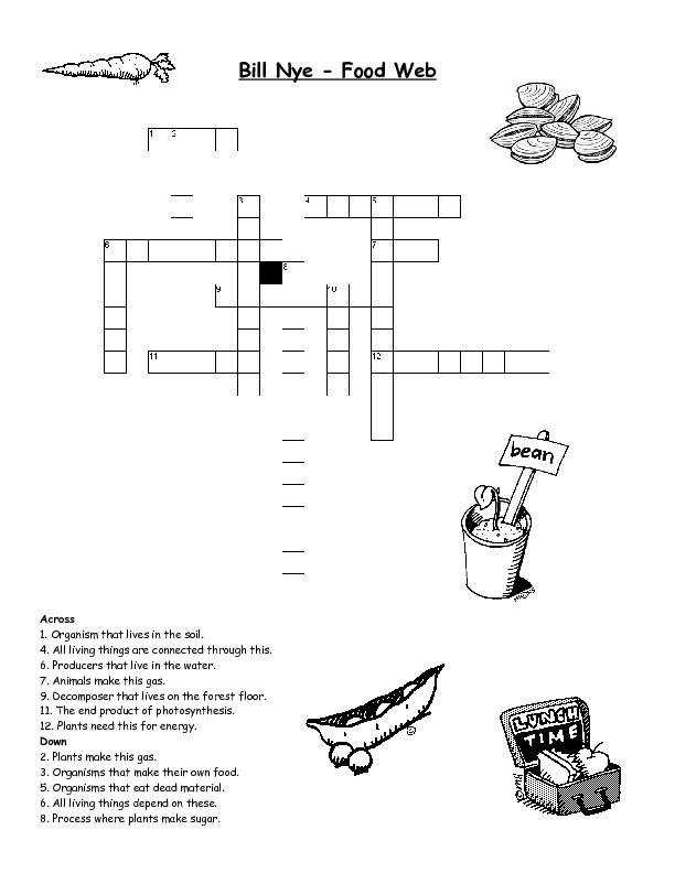 Fine Food Chain Worksheets Free Worksheet 9 Best Ideas