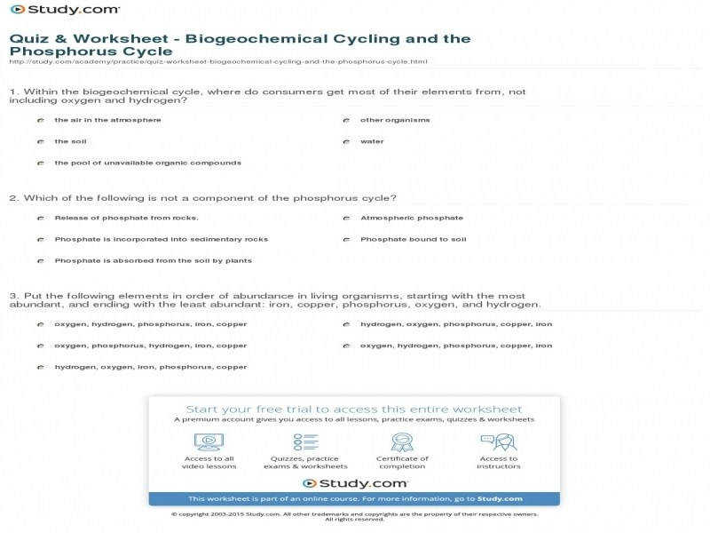 Quiz & Worksheet – Biogeochemical Cycling And The Phosphorus Cycle