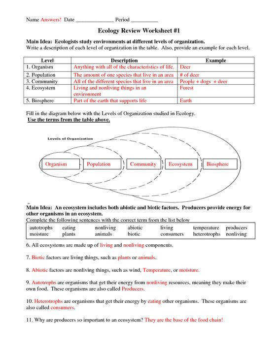Biology Worksheet Answers Homeschooldressage Com