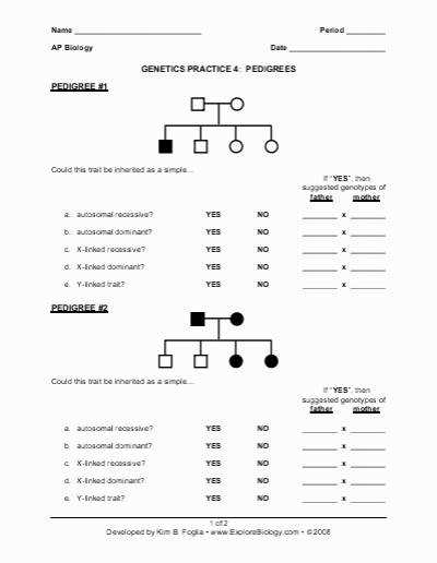 Pedigree Worksheet Answers Beautiful Biology Pedigree Worksheet Free Worksheets Library