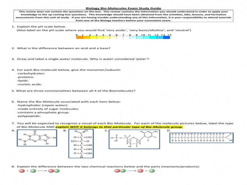 Formalbeauteous Organic Chemistry Biomolecules Jpg Hcc Learning size 800 x 600 px source semnext