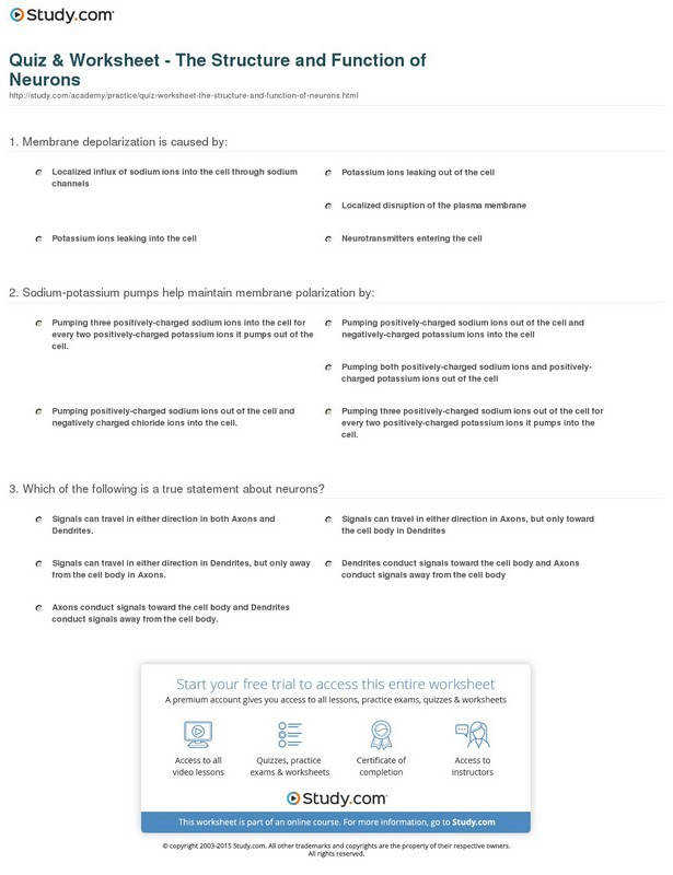 Full Size of Worksheet save Excel Worksheet Template Army Body Fat Worksheet Excel Sales Worksheet