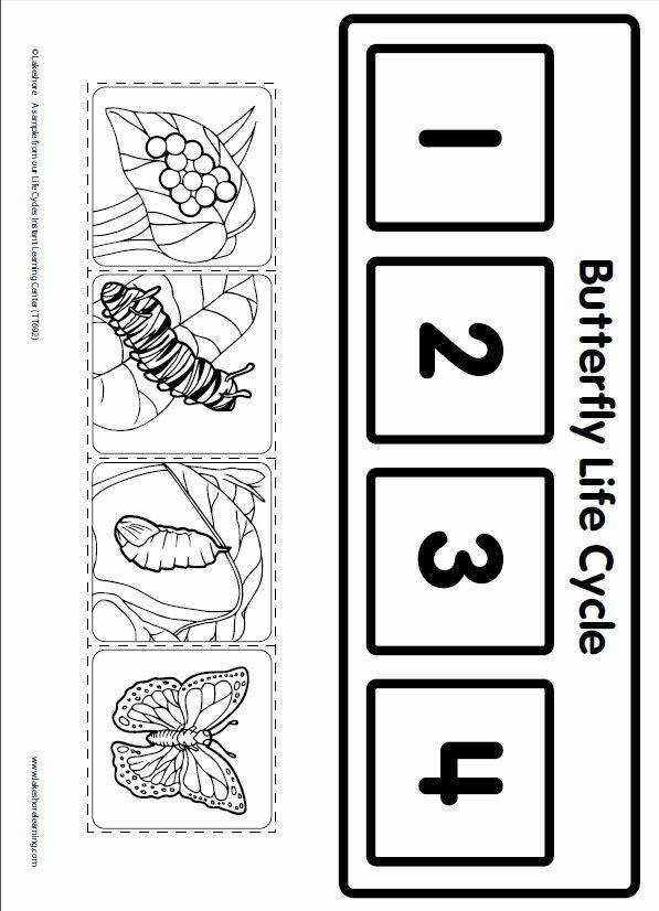 Letter C Caterpillar Unit Life Cycle Learning Game from Lakeshore Learning Children learn all about the life cycle of a butterfly