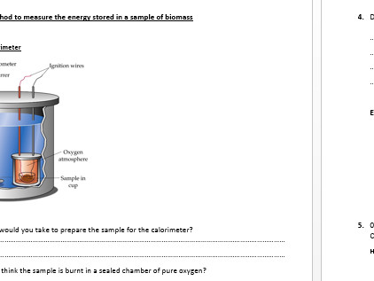 AQA A LEVEL Energy in food chains calorimetry worksheet by Nieuwenhuys Teaching Resources Tes