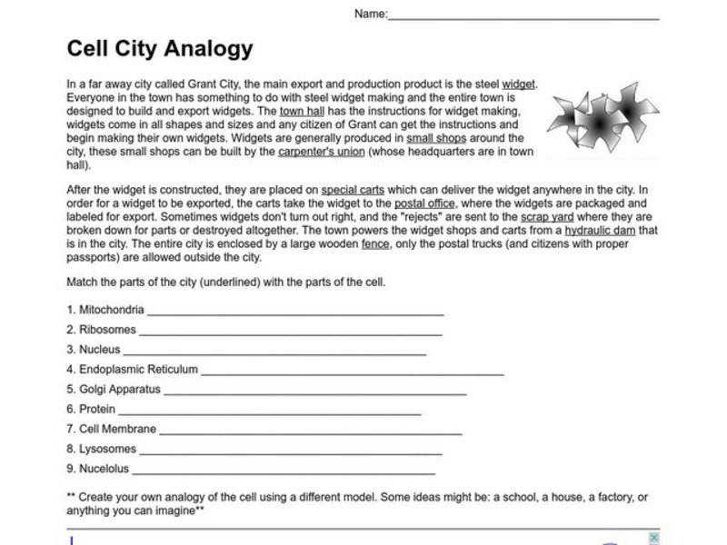 Cell City Analogy All Grades Worksheet