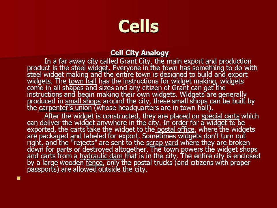 13 Cells Cell City Analogy