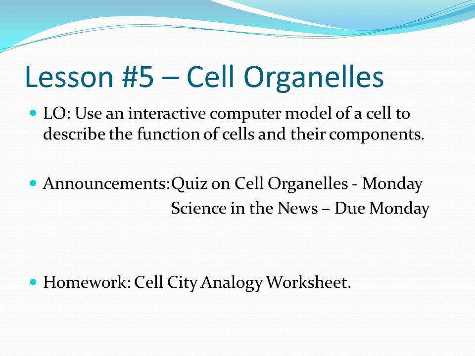 Cell Organelles DNA
