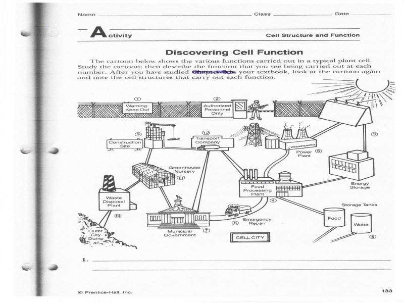 """9 photos of the """"Cell City Analogy Worksheet"""""""
