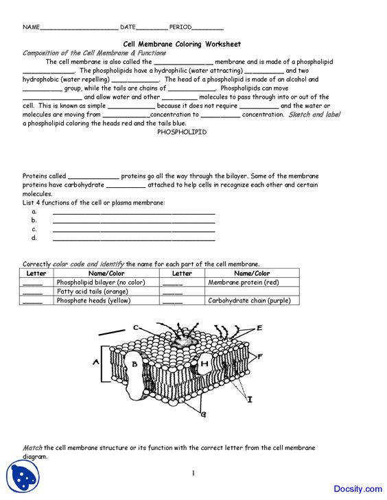 worksheet Cell Membrane And Tonicity Worksheet cell membrane and tonicity worksheet answers abitlikethis plasma worksheets
