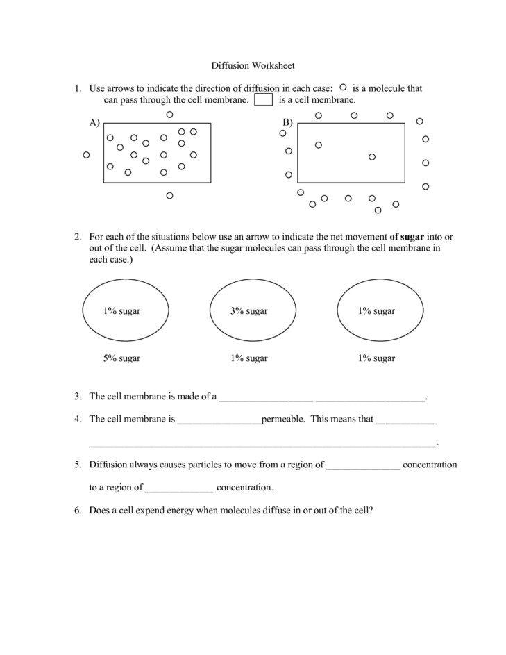 Medium Size of Worksheet snacks Illos V1dd Plant Cell Coloring Page Plasma Membrane