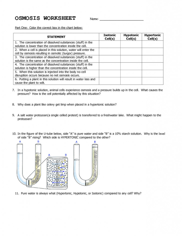 Tonicity And Osmosis Worksheet Biology Answers - 008121321 1 ...
