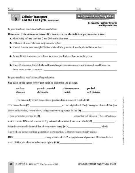 Cellular Transport Worksheet Cell Organelle Research Worksheet Answers