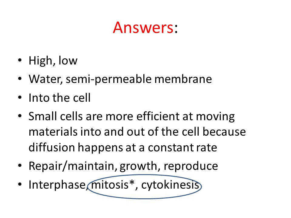 the cell transport mechanisms and cell permeability