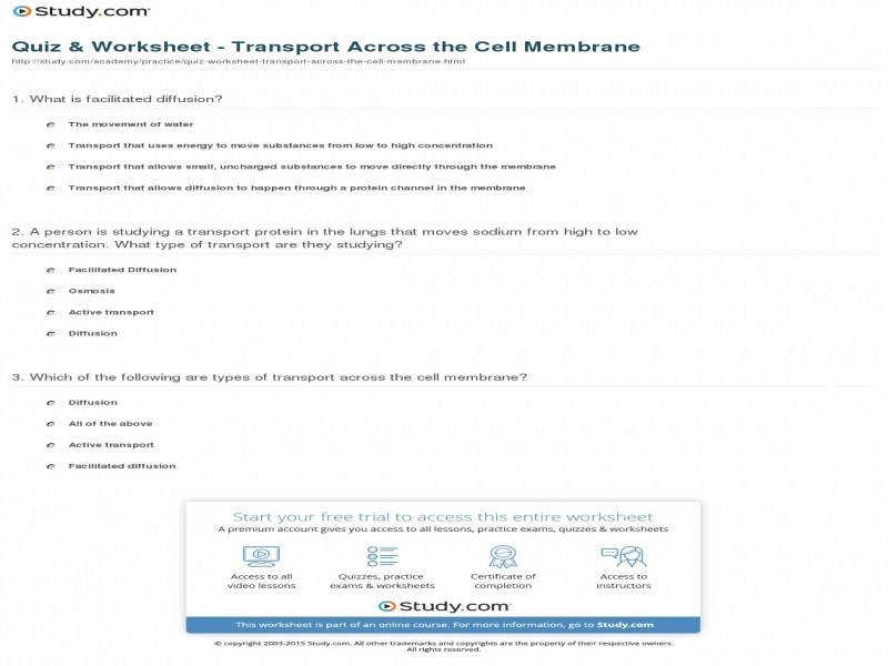 Source · Quiz & Worksheet Transport Across The Cell Membrane Study