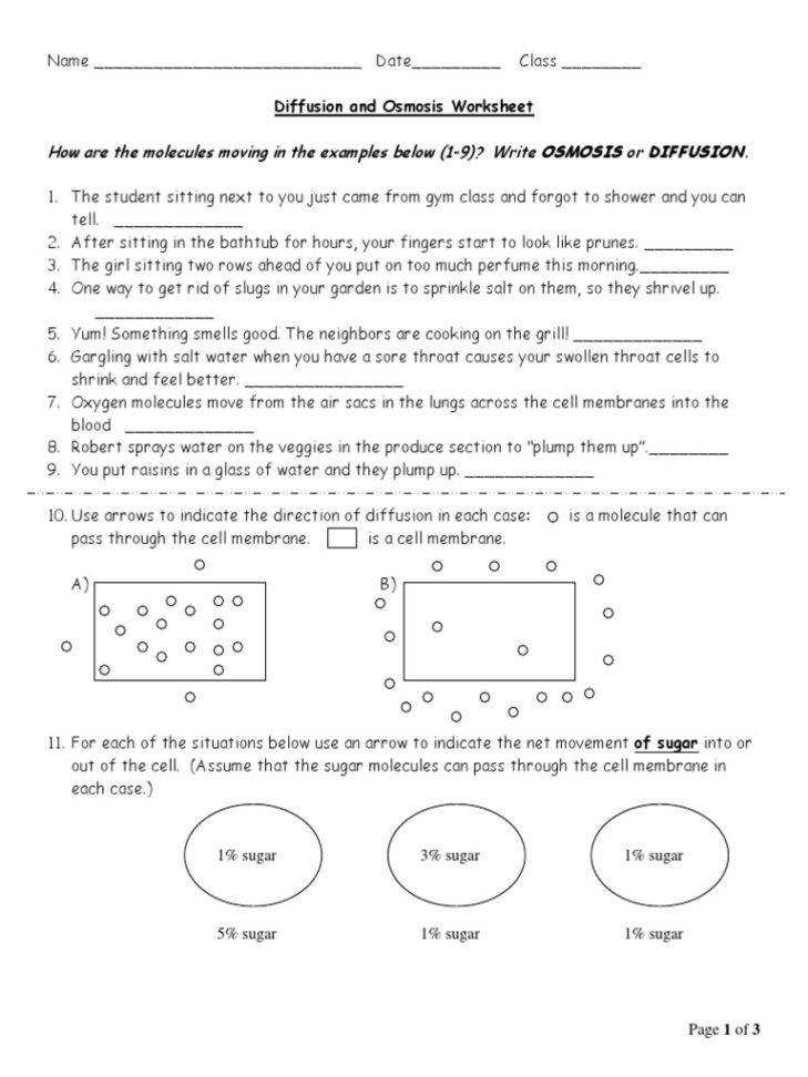 Medium Size of Worksheet image Label The Tonicity For Each Solution Types