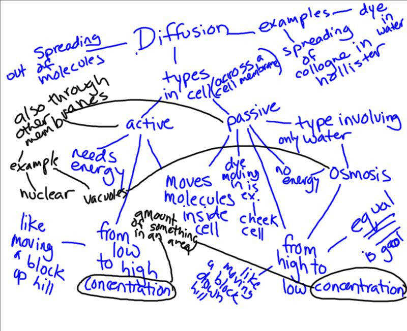 Period 8 Concept Map Discussion