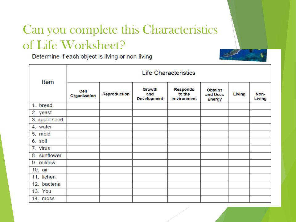 characteristics of life worksheet the large and most comprehensive worksheets. Black Bedroom Furniture Sets. Home Design Ideas