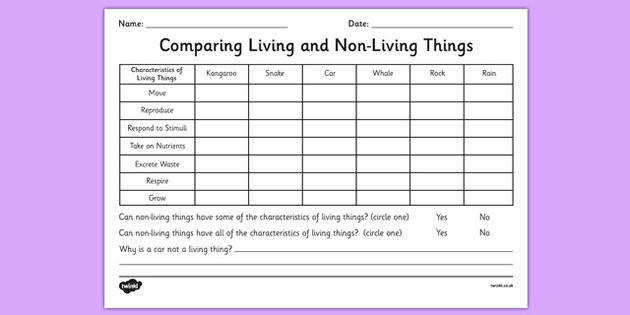 paring Living and Non Living Things Worksheet