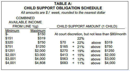 Child Support Results
