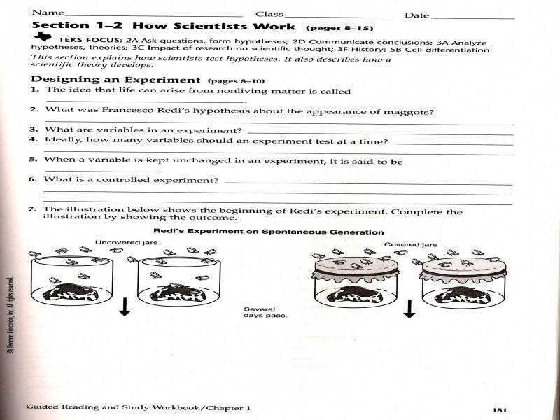 Classical Conditioning Worksheets – Wallpapercraft
