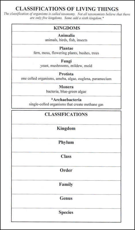 Classification of Living Things 6