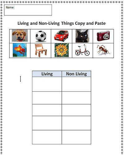 Classification Organisms Worksheet