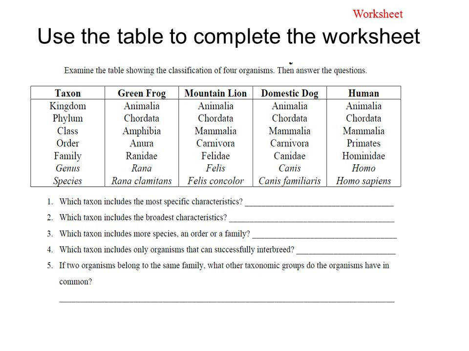 6 Use the table to plete the worksheet Worksheet