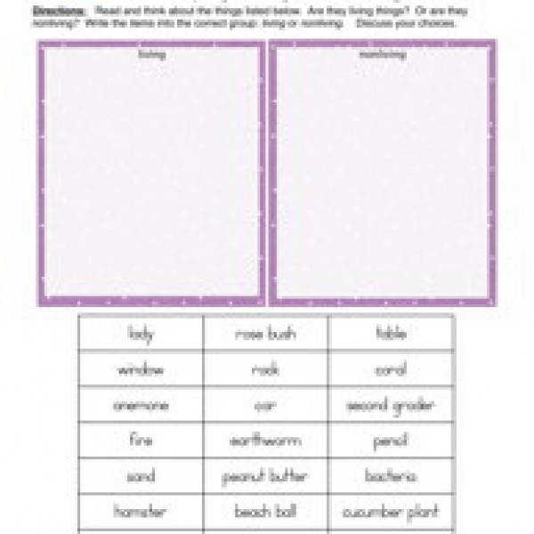 Animal classification worksheet science pinterest puter activity worksheets