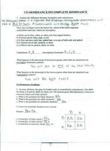 In plete and co Dominace answers pdf