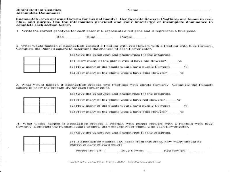 Codominance Worksheet Homeschooldressage Com