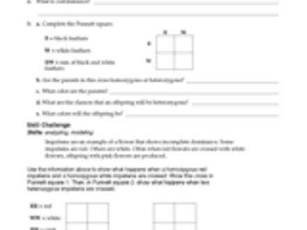 Subjects In plete And Codominance Worksheet Answers Worksheets For School