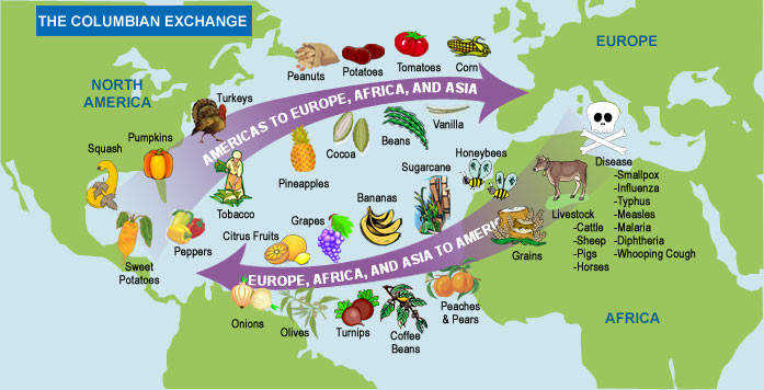 A New World The Columbian Exchange curriculumoffice697 — 356Search by image Explorers carried