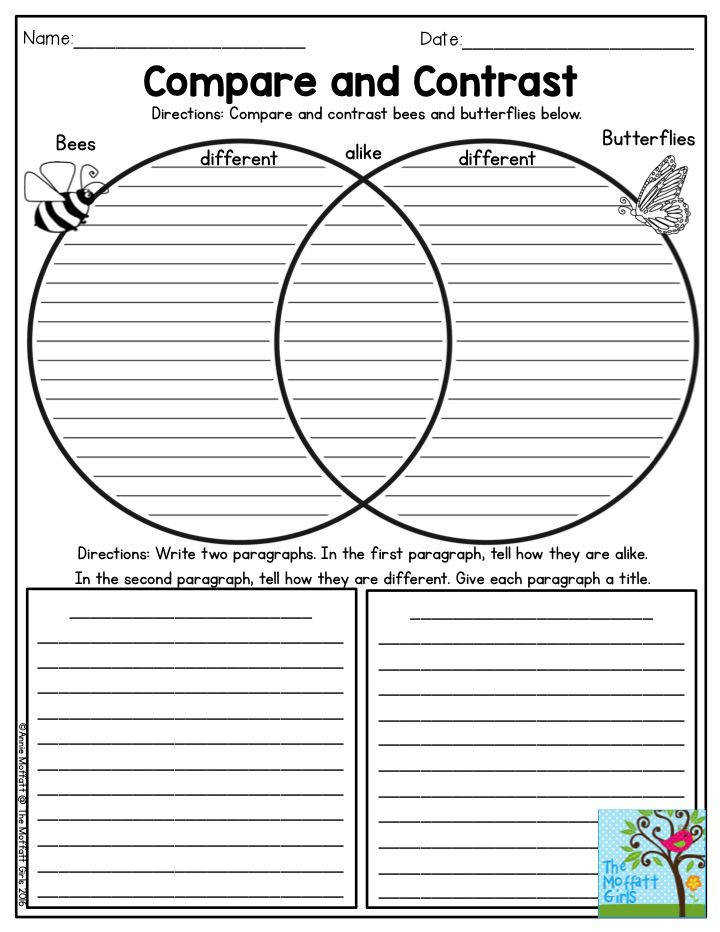 pare and Contrast Bees and Butterflies Such a fun activity for Third Grade The