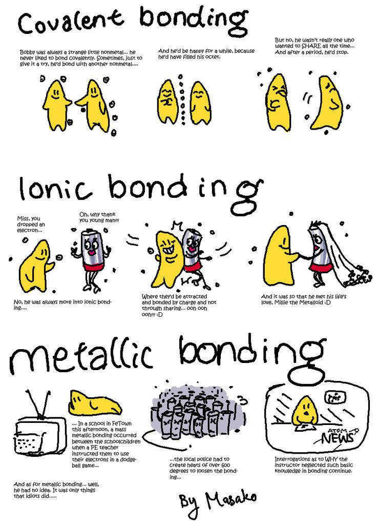 Covalent bonds are the sharing of electrons to reach octet and ionic are the transfer of