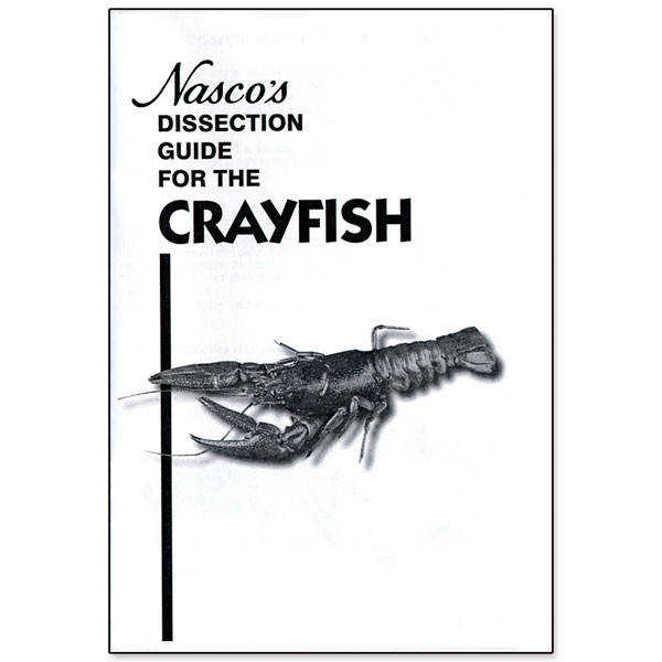 Crayfish Dissection Guide View