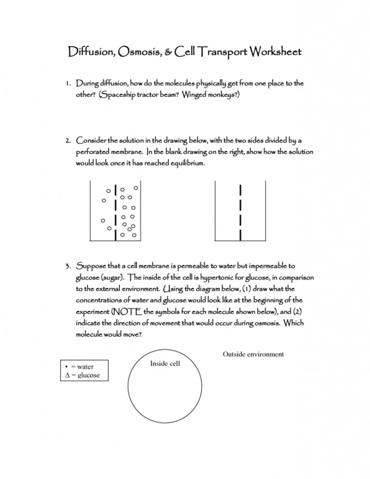 Medium Size of Worksheet example Osmosis In Cells Science 8 Diffusion And Osmosis Worksheet