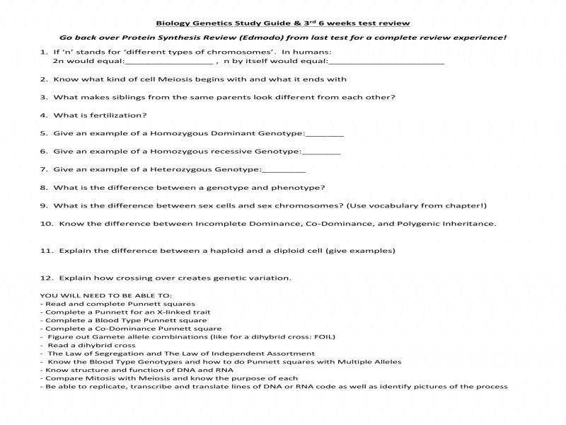 Monohybrid Cross Worksheet With Answers Worksheets