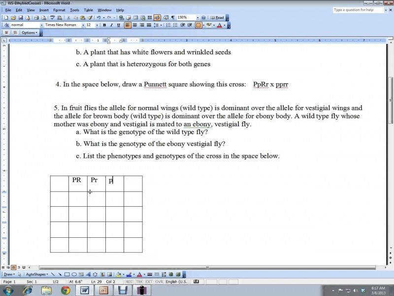 Dihybrid Cross Practice Worksheet – Youtube