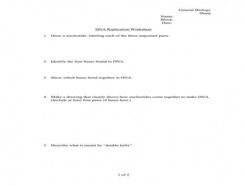 Dna Base Pairing Worksheet Answer Sheet Proga Info