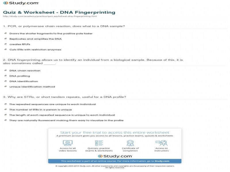 Dna fingerprinting pbs worksheet answers