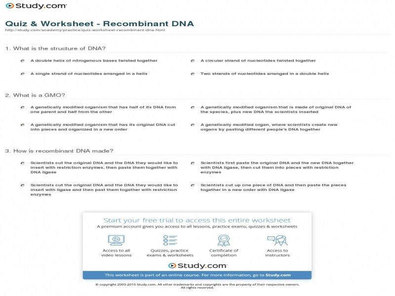 Dna replication coloring page coloring home guillermotull gallery for dna replication coloring page coloring home freerunsca