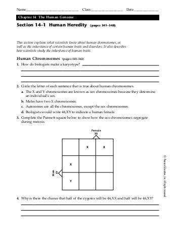 heredity worksheets 100 images science key term review