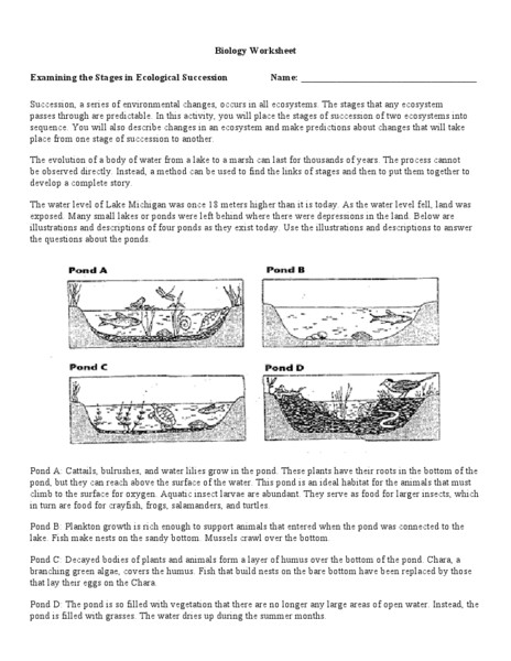 Ideas Collection High School Ecology Worksheets For Your Format Sample